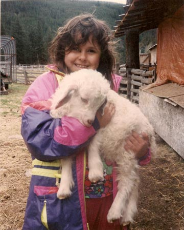 Angora goat raised and bred by Blue Star Ranch, Princeton BC